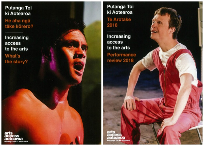 The covers of Te Arotake Performance review 2018 and He aha nga take korero? What's the story? 2018