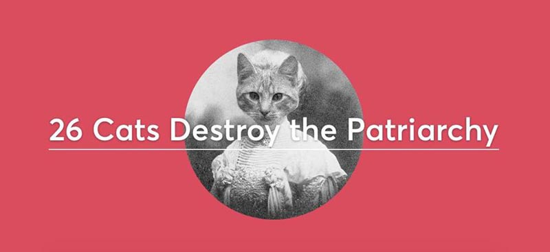 Promoting 26 Cats Destroy the Patriarchy